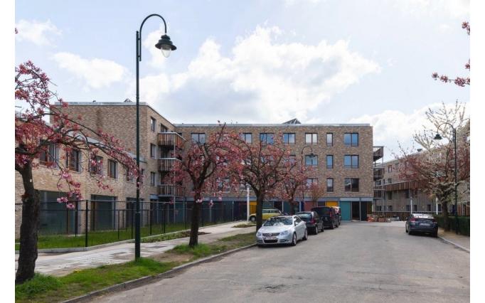 Intertwining urban ecology